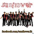 C Sunflower new with Chamara ranawakaa