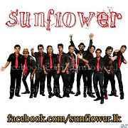 Sunflower Musical Band - Free Online Music