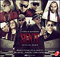 Siente (Official Remix) (Prod. DJ Luian)
