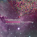 The Party (feat. Silver Medallion) (Chi Duly Remix) (Bonus Track)