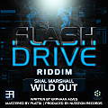 Shal Marshall - Wild Out (Flash Drive Riddim) (Soca 2015)