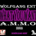12.Ammo - What You Want