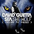 David Guetta ft Sia-  She Wolf (Ismail Sönmez Remix)