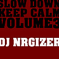 DJ NRGizer - slow down - keep calm vol.3 (dj-nrgizer.de)