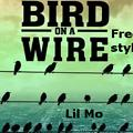 Bird On A Wire (Freestyle)