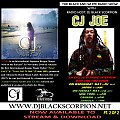 CJ Joe - Radio Interview on The Black and White Radio Show Pt. 2 of 2 (5-23-17)