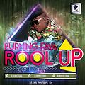 ROLL UP-MIXED BY YTM