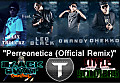 Perreonetica (Official Remix)