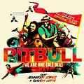 Pitbull ft JLo ft Claudia Leitte - We are one (Bastard Batucada Solito Remix)