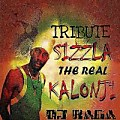 Tribute Sizzla by Dj Raga