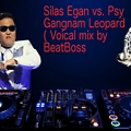 Silas Egan vs. Psy - Gangnam Leopard (vocal mix by beatboss)