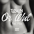 T-Pain Ft. Plies - Or Wut
