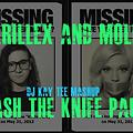 DJ KayTee - Skrillex and Molly Crash the Knife Party (Go HERE FOR HIGH QUALITY +UPDATED VERSION >>> http://www.hulkshare.com/8y00w7v4b1mo )