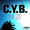 C.Y.B. - Now (Marc Van Linden Remix) [Superfreax Records]