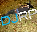 DJRP - White Boy Wasted Vol 1