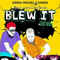 Andrew Parsons & Shwann feat. Veela - Blew It (George Acosta Remix)