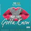 Yung Berg ft Kevin Writer - Gotta Know