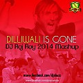 Dilliwali Is Gone (DJ Raj Roy 2014 Mashup) - www.djsbuzz.in