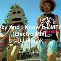 Sexy And I Know It - LMFAO (Electro Mix)