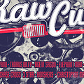 RAW CUT RIDDIM 2013 MIX (DJ RIZZZLE)