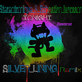 Stereotronique & Sebastian Ivarsson - Tonight (Silver Lining Remix)