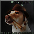 Cigar Prod By DJChromeBeatz