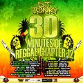 DJJUNKY-30 MINUTES OF REGGAE CHAPTER 12