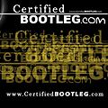 Wale ft Rihanna - Bad Remix    (CertifiedBOOTLEG.com)
