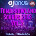 Tomorrowland Sounds Session 2013 VOL2 mixed by Dj Bridg