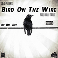 Bird On The Wire Freestyle - Big Ant 2
