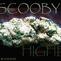 Scooby-Lets Get Higher 2