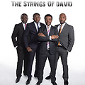 I GO FLY by The Strings of David (TSOD)
