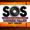S.O.S. Featuring Polina (djcruMbs Falling Boy Remix)
