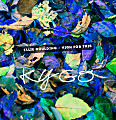 High For This (Kygo Remix)