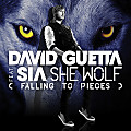 David Guetta - She Wolf (Falling to Pieces) [feat Sia] (HQ)