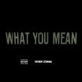What You Mean