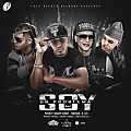 Pusho Ft. Daddy Yankee  Farruko Y D.OZI - Soy Un Problema (Official Remix)