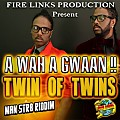 Twins Of Twins - A Wah A Gwaan