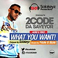 2code - What you want (Prod. Solokeyz)