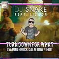 DJ Snake feat. Lil Jon - Turn Down For What (SwaggleRock Calm Down Edit)