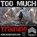 Too Much Training