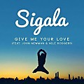 Sigala feat. John Newman Nile Rodgers - Give Me Your Love (Extended Mix)