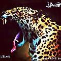 Jaguar-Clooks (Original Mix) | SCD R3CORDS