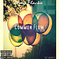 Common Flow (Prod.By CMR)