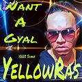 Want A Gyal - YellowRas - 1005 Songs