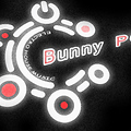 Bunny PG - Electro House Collection Autumn 2012