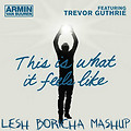 Armin Van Buuren vs David Guetta & W&W & Antillas & Dankann - This Is What It Feels Like (LESH BORICHA EDIT MASHUP)