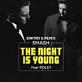 Smash & Ridley – The Night Is Young (Dmitrii G Remix)