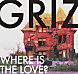 GRiZ - Where Is The Love (Original Mix) .mp3