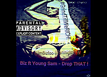 Biz Foo ft Young Sam- Drop That (youtube vid)